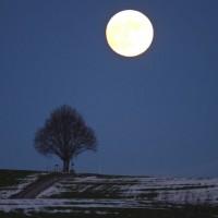 Finding Peace: Vorbereitung auf die Wintersonnenwende I So. 03.12., 14-17 Uhr